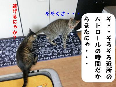 2017-07_01_03.jpg