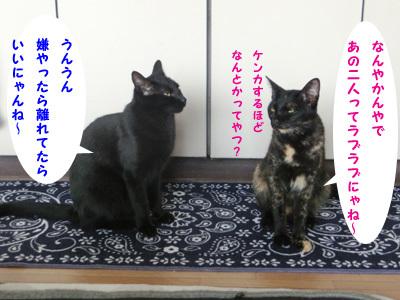 2017-08_26_02.jpg