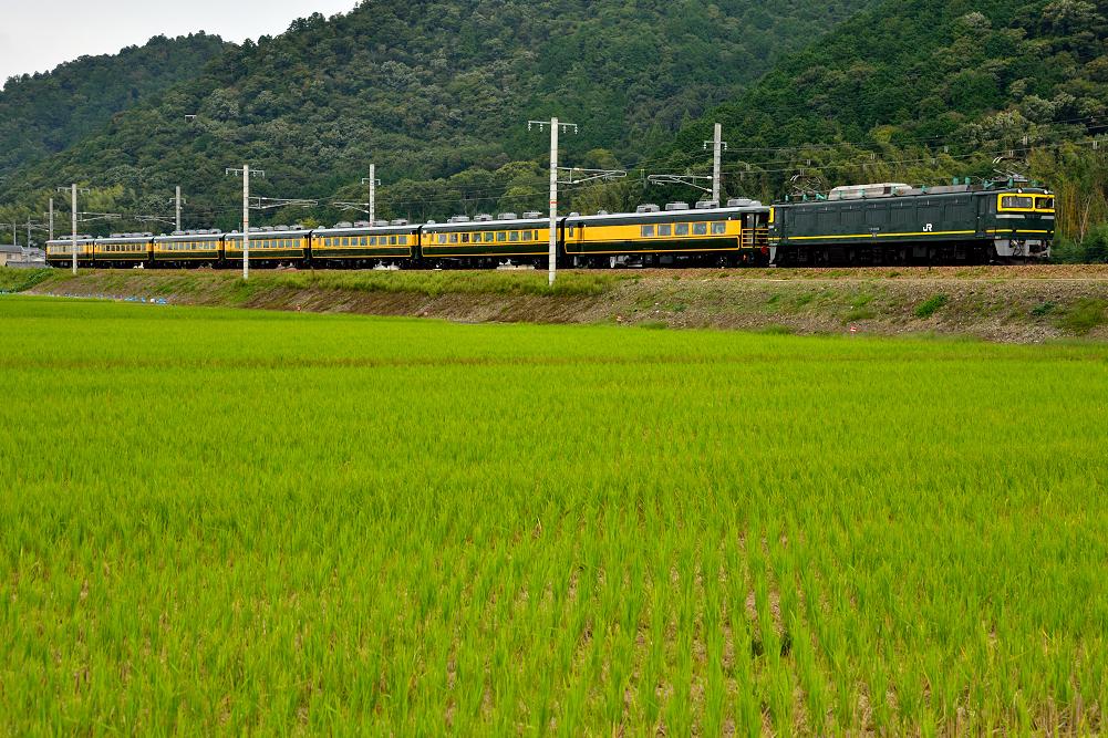 EF81-114(9915・能登川~安土)3561
