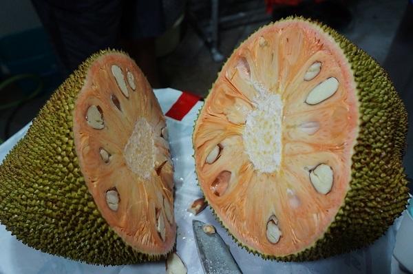 jackfruits 2