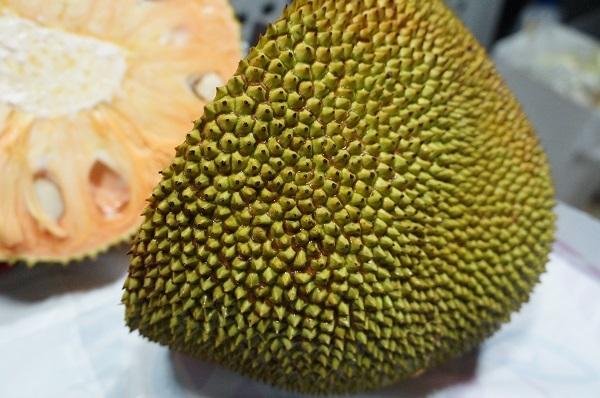 jackfruits 3