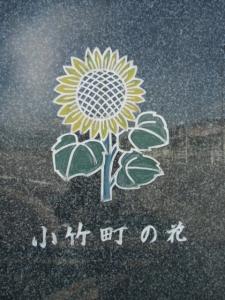 141025-108.jpg