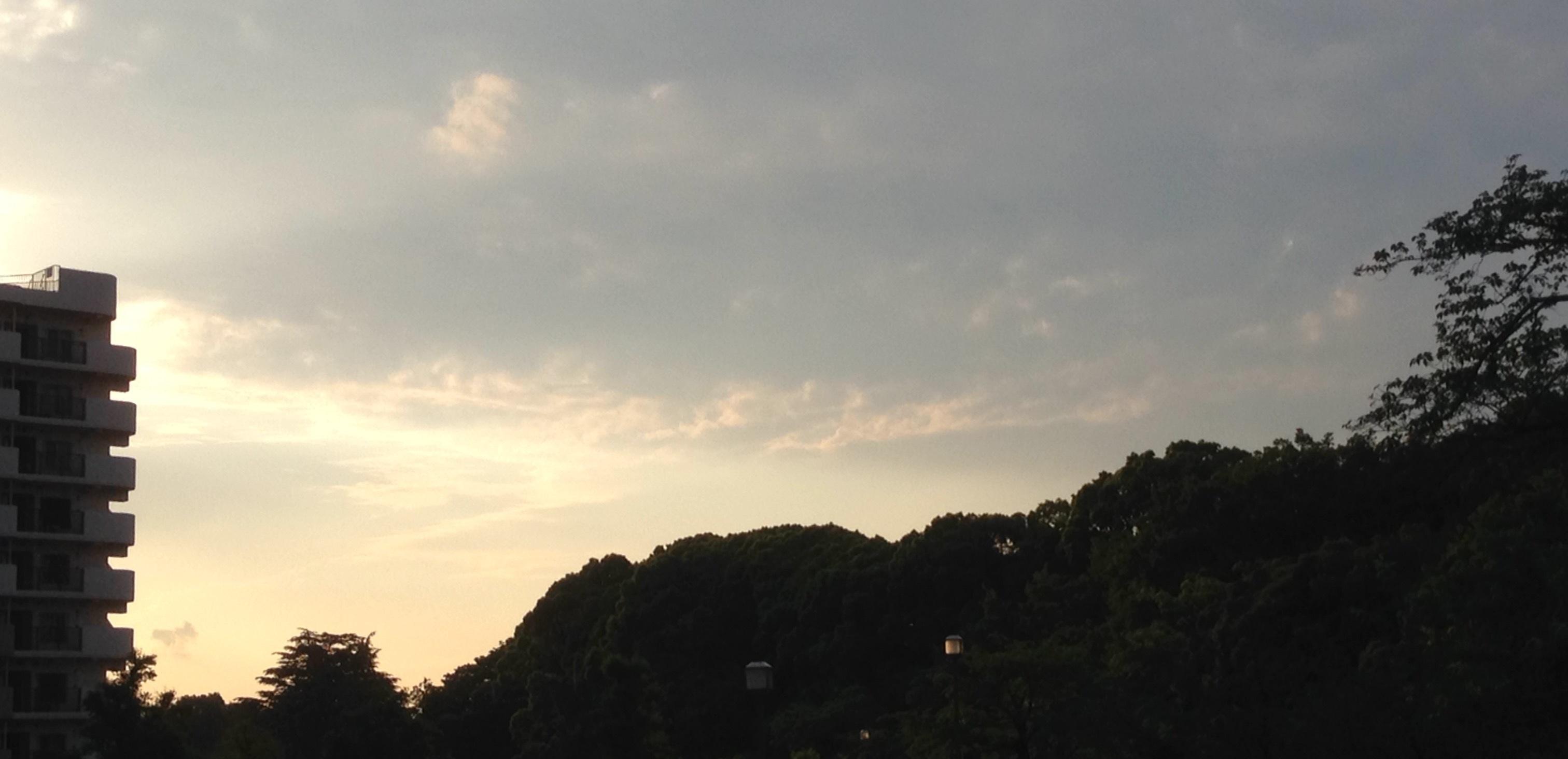 哲学堂公園 遠景