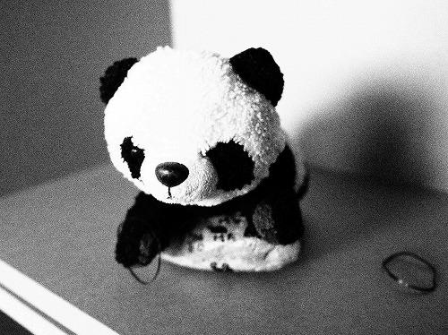 500白黒パンダ