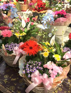 季節のお花いっぱい
