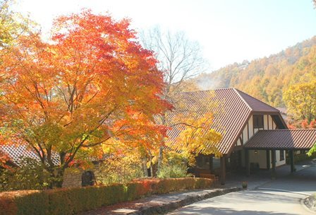 ホテルエントランスの紅葉