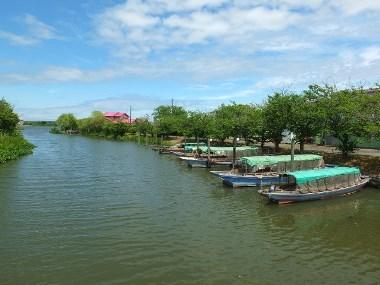 3水郷の風景0614