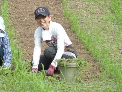 715真知子さん畑