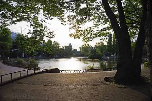 見次公園001