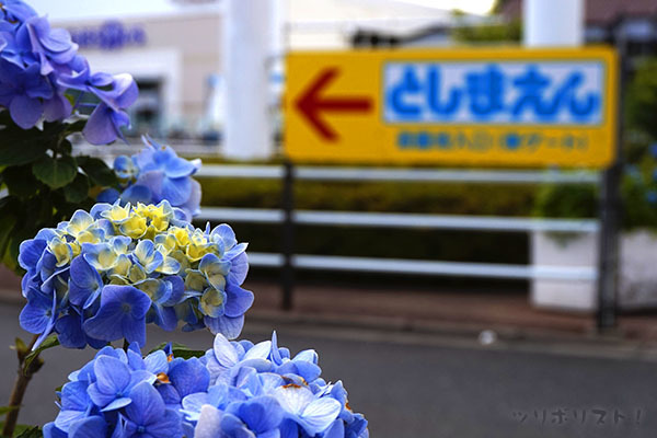 スーパーフィッシング豊島園099
