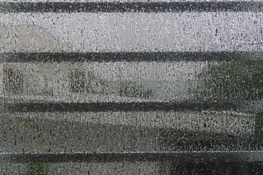 梅雨の雨-a P1110195