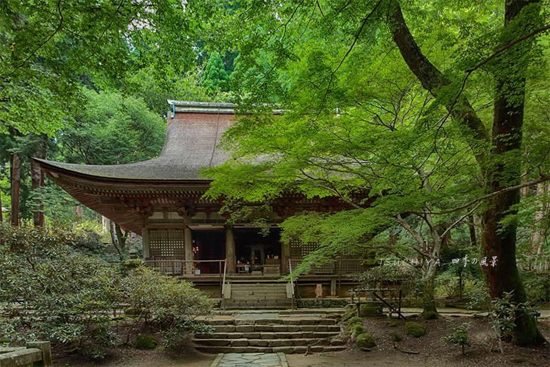 奈良 室生寺 2