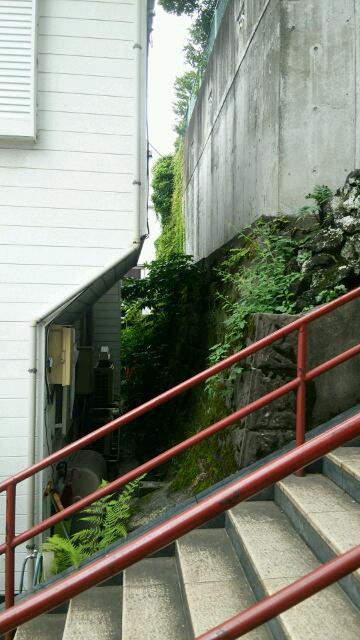 須賀神社中腹