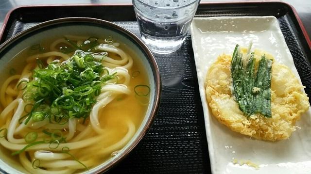 170524 たぬき② ブログ用