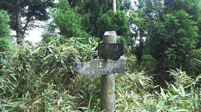 170720 若杉天然林⑪ ブログ用