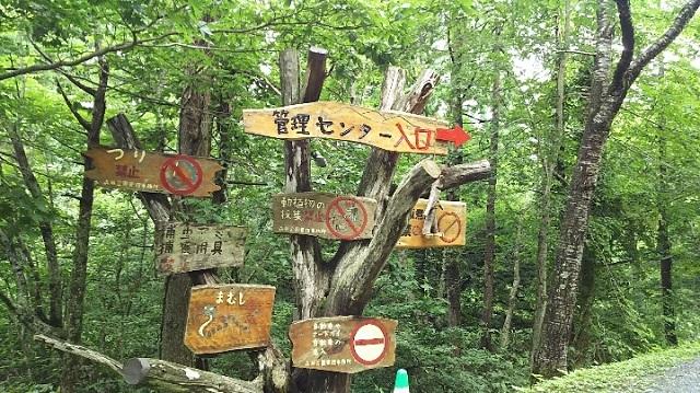 170726 岡山県立森林公園① ブログ用