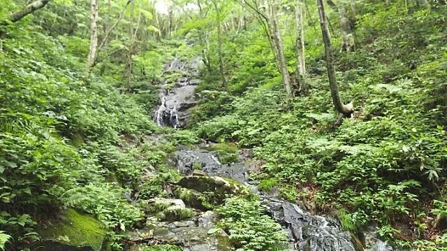 170726 岡山県立森林公園㉒ ブログ用