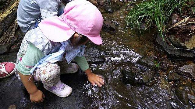 170726 岡山県立森林公園 yamap⑮ ブログ用
