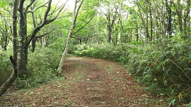 170726 岡山県立森林公園③ ブログ用