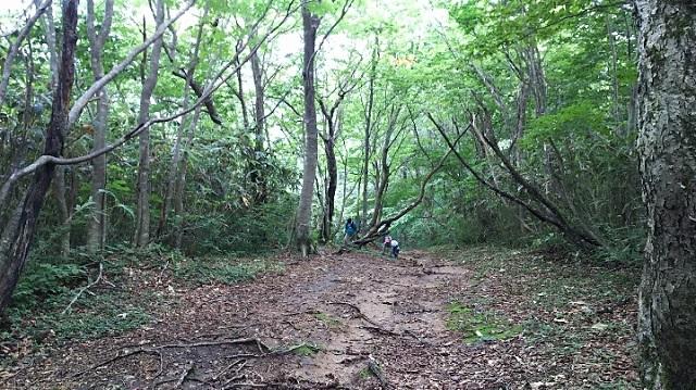 170726 岡山県立森林公園⑩ ブログ用