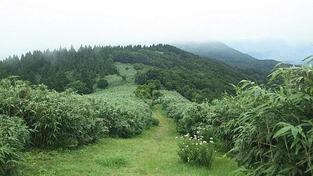 170726 岡山県立森林公園⑮ ブログ用