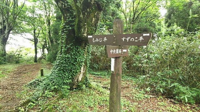 170726 岡山県立森林公園⑰ ブログ用