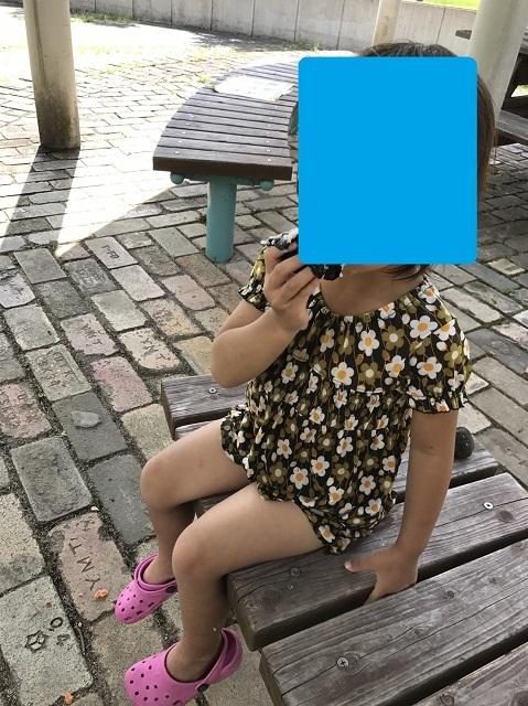 170802 清音ふるさとふれあい広場⑥ ブログ用目隠し