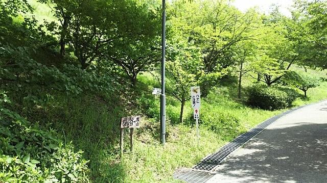 170802 福山① ブログ用