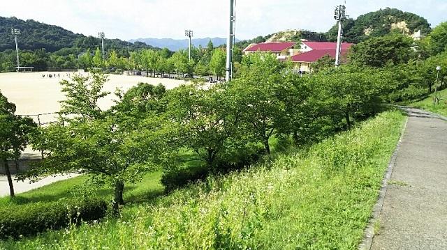 170802 福山⑪ ブログ用
