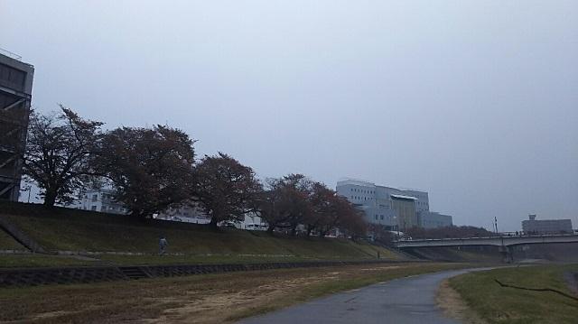 171108 後楽園外苑~岡山城① ブログ用