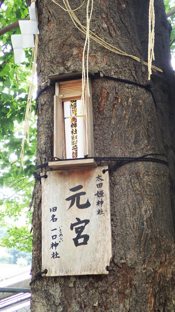 太田姫神社元宮 札のアップ