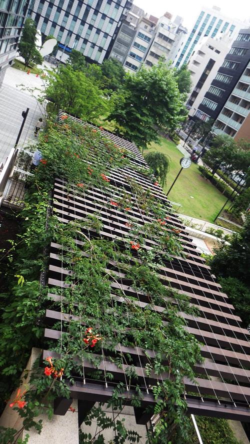 花の棚と庭園
