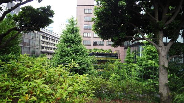 屋上庭園から前の「ECOM駿河台」を見る