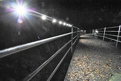リードパイプ誘導灯 夜間点灯① (2)