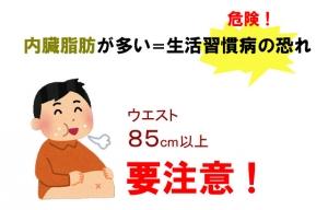 内臓脂肪危険