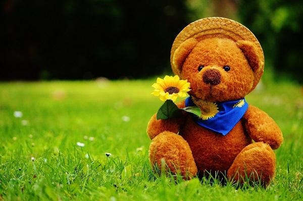 Teddy-Bear-HD-Wallpaper.jpg