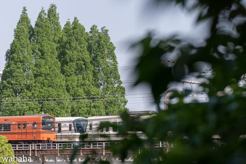 290514kanjousen-12.jpg
