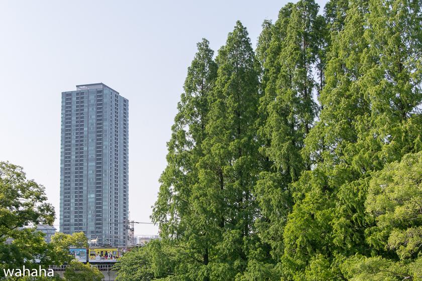 290514kanjousen-14.jpg