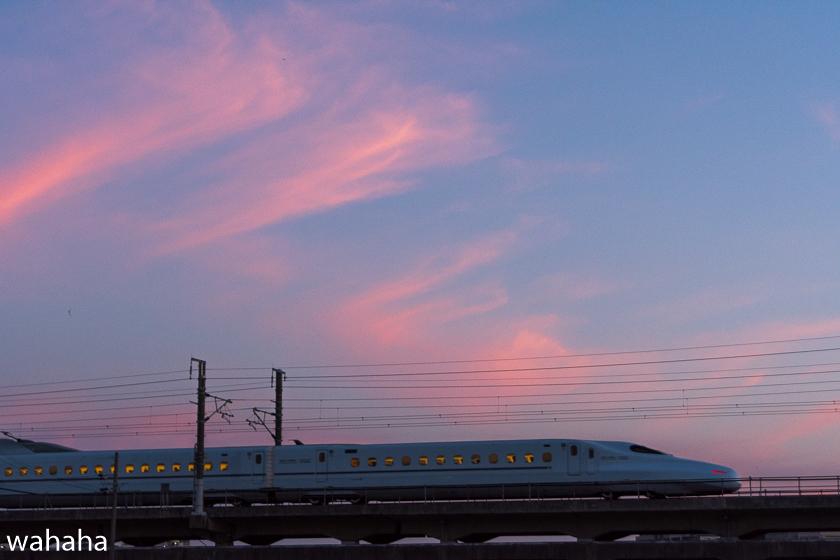 290614kanagasaki-4.jpg