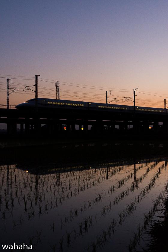 290614kanagasaki-5.jpg