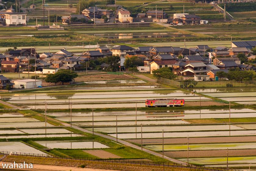 290619houjoufukan-1b.jpg