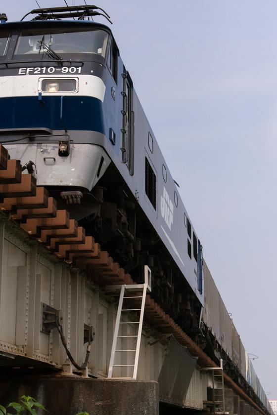 290717ichikawa-1.jpg