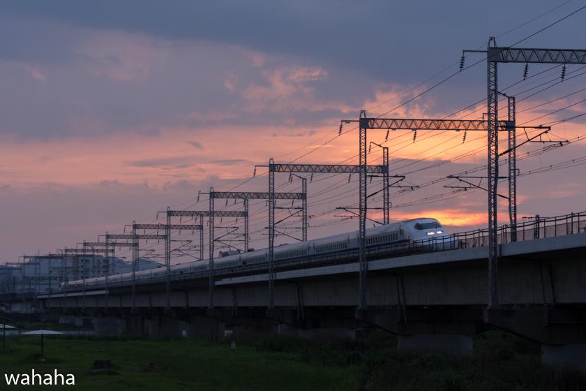 290717ichikawa-3.jpg