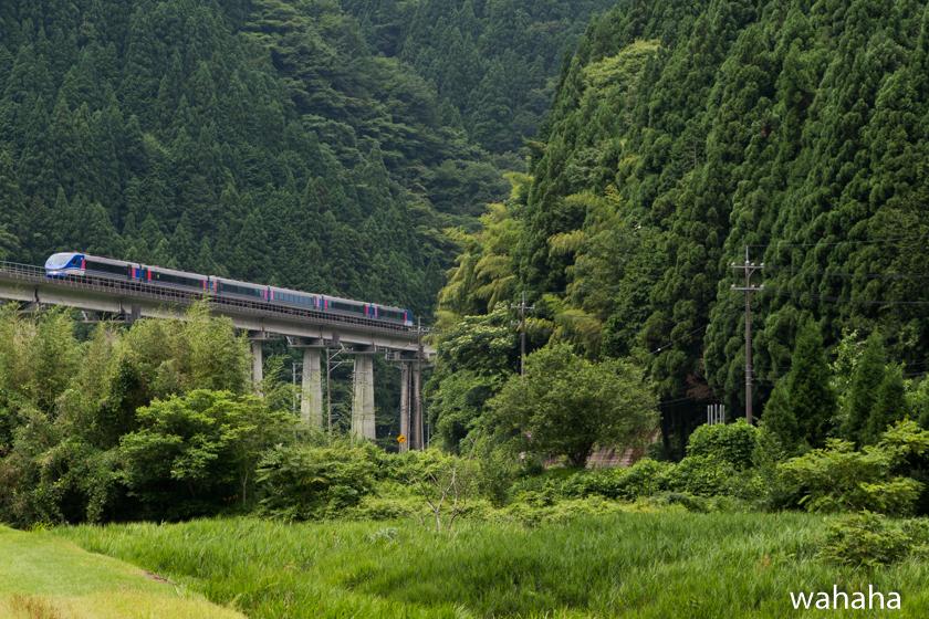290729chizukyu-6.jpg