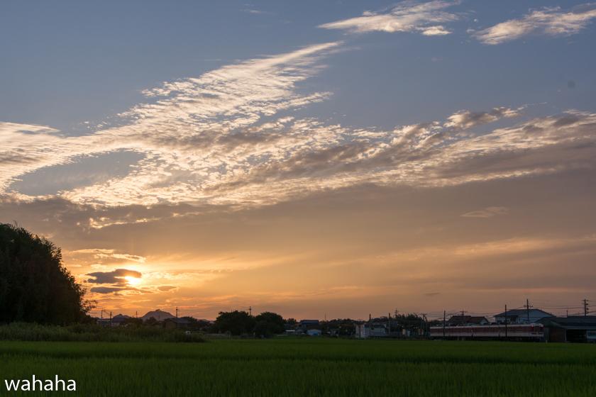 290801sintetsu_hata-2.jpg