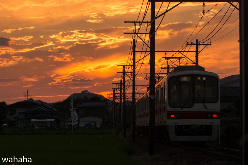 290801sintetsu_hata-5.jpg