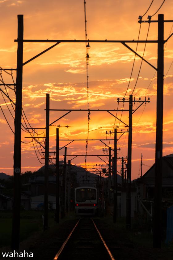 290801sintetsu_hata-6.jpg