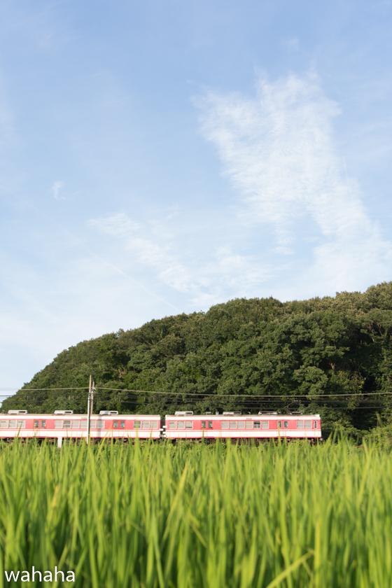 290801sintetsu_onoichiba-1.jpg