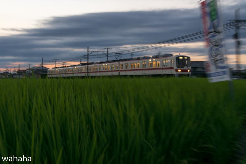 290803sintetsu_hata-4.jpg