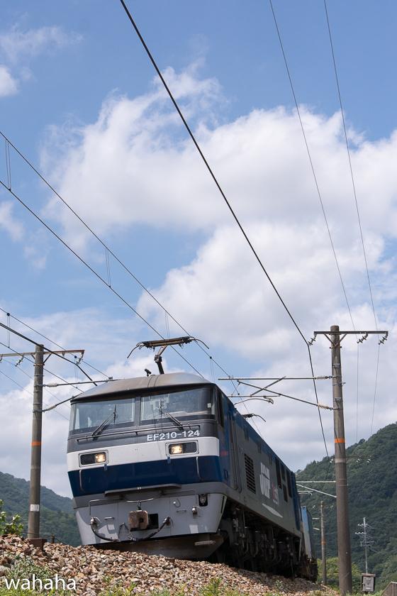 290805kamigori-5.jpg